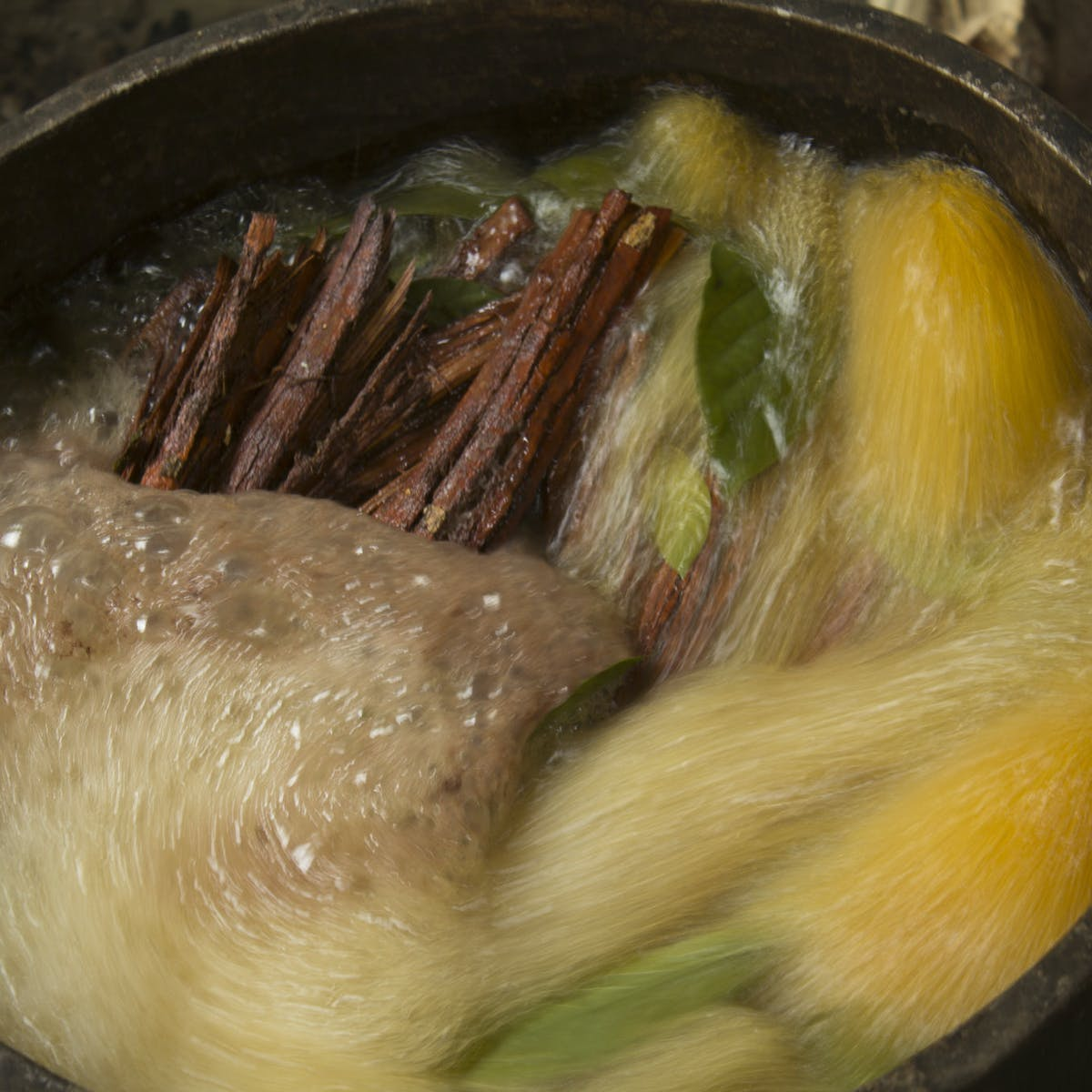 Weekly Dose: ayahuasca, a cautionary tale for tourists eager