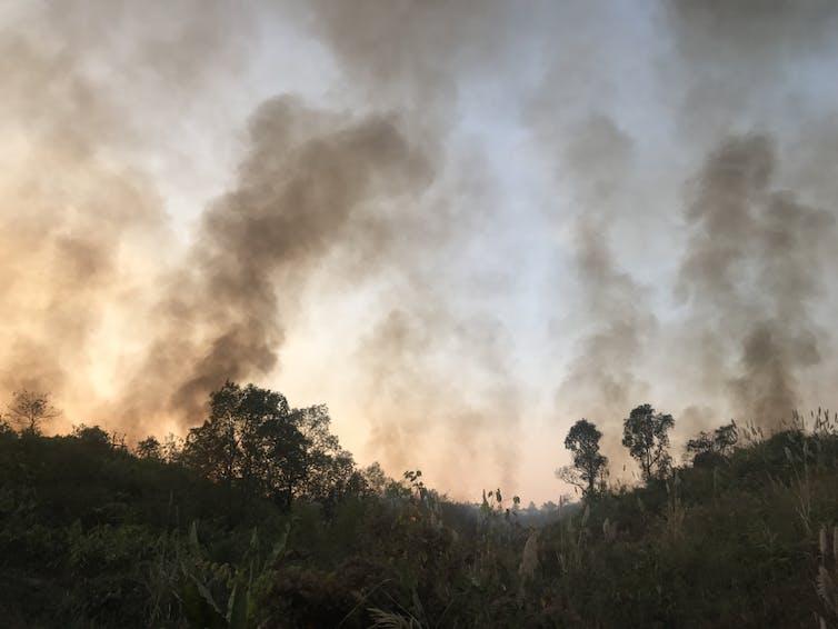 Somewhere in the Khasi Hills, bordering Bangladesh, smoke envelops the forest. Mirza Zulfiqur Rahman, Author provided