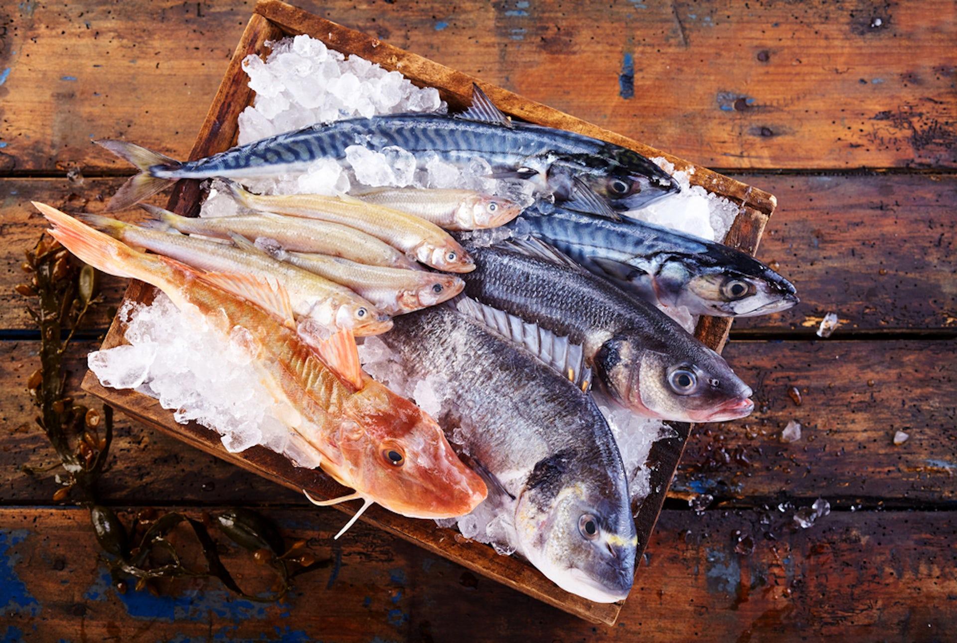 Những điều cần biết về lợi ích của dầu cá đối với nam giới