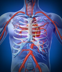 Heart failure is when the heart isn't able to pump blood around the body effectively. from shutterstock.com