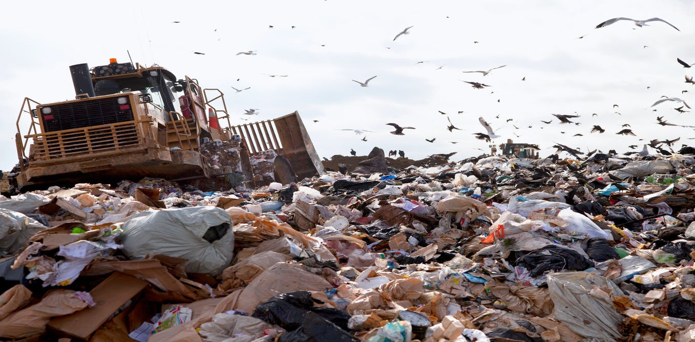 How disgust stops us from living sustainably – and how to stop it