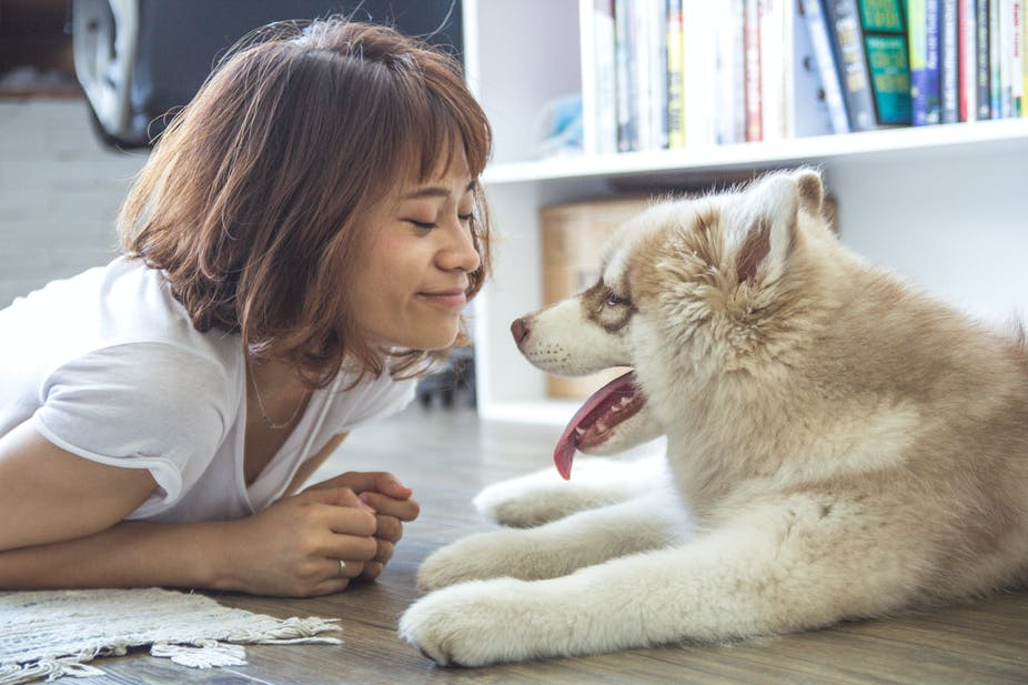 Pets Bring Kids With Autism Out Of >> How Animals Can Help Autistic Children