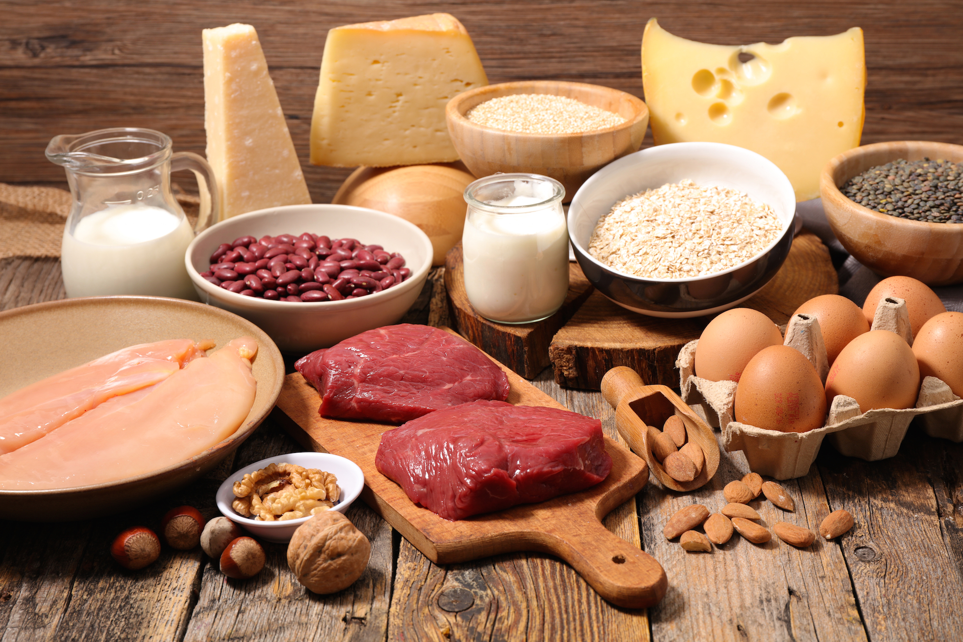 best protein source food
