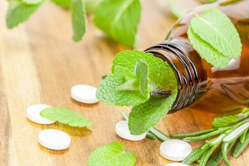 Why medicinal plants could play a role in treating malaria