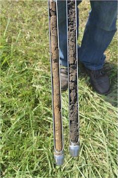 cost of soil testing in kenya