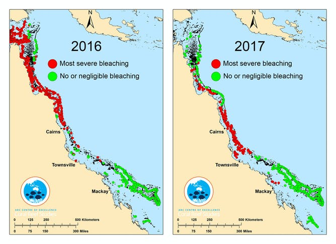The unprecedented back-to-back bleaching has stretched across a huge swathe of the Great Barrier Reef.