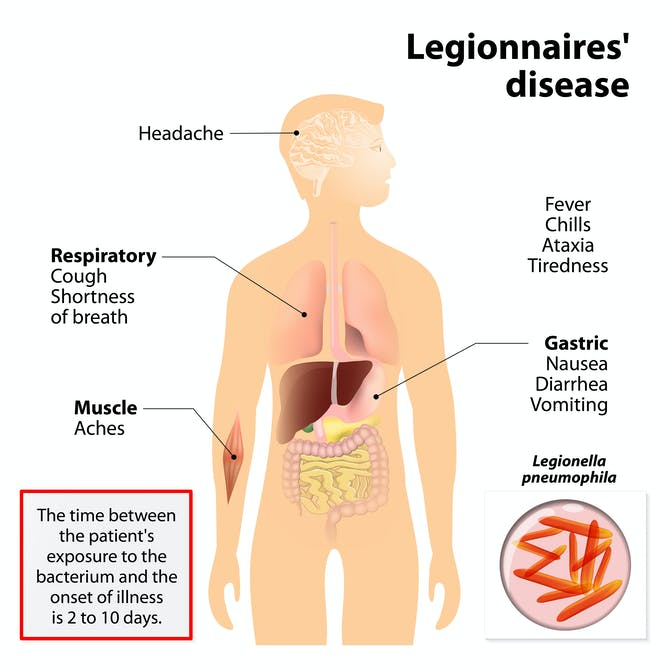 don't worry, the odds of catching legionnaires' disease in, Human Body