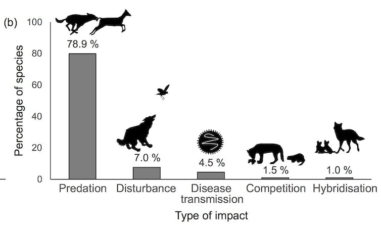 endangered species causes and effects