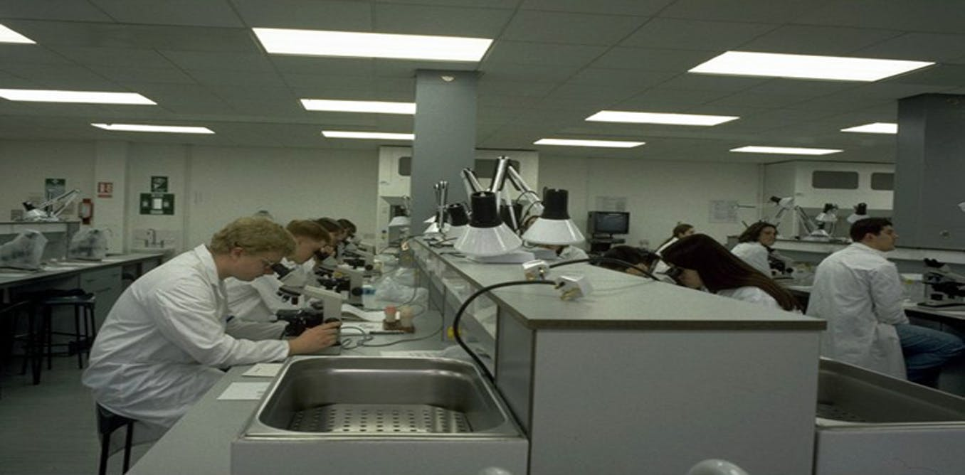sydney uni foundation research paper edit