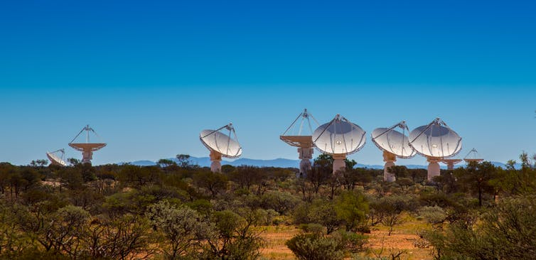ASKAP antennas during fly's-eye observing. All the antennas point in different directions. Kim Steele (Curtin University), Author provided