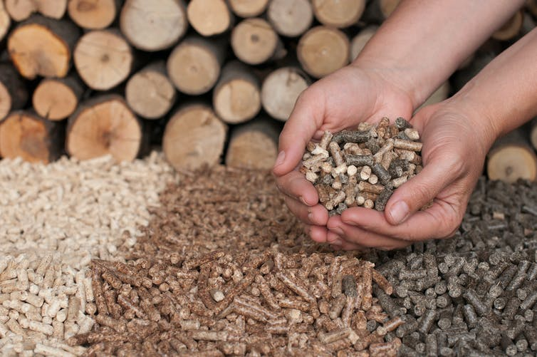Fuel pellets made from waste can be burned for energy
