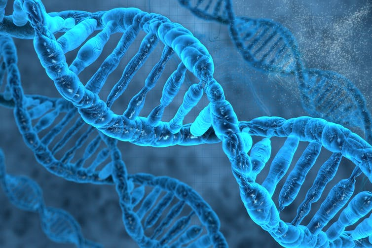 Scientists Discover Over 50 New Intelligence Genes — Inherited Intelligence