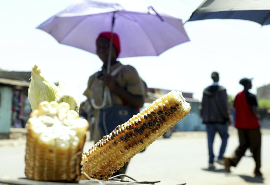 Clues and solutions to Kenya's puzzling food price crisis