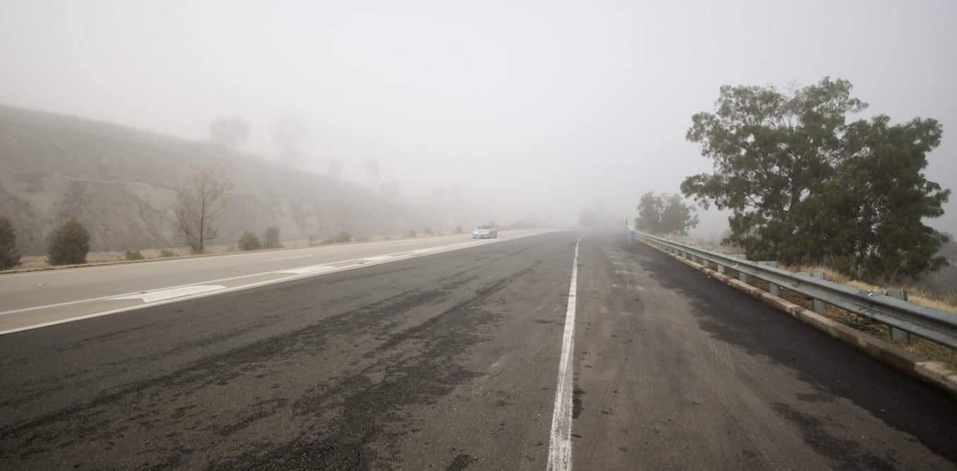 The plan to protect wildlife displaced by the Hume Highway has failed