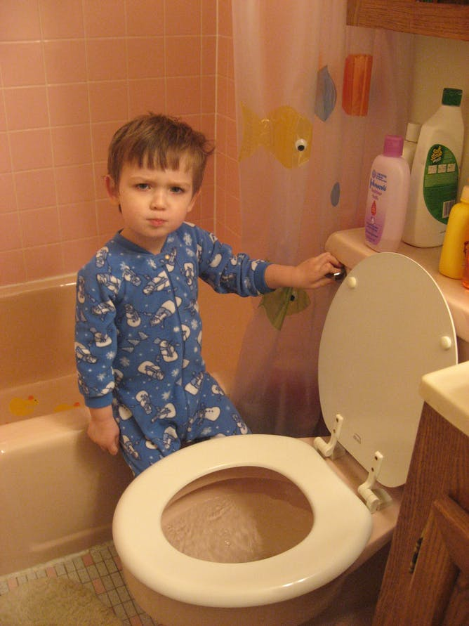 How Can I Get My Kid To Flush