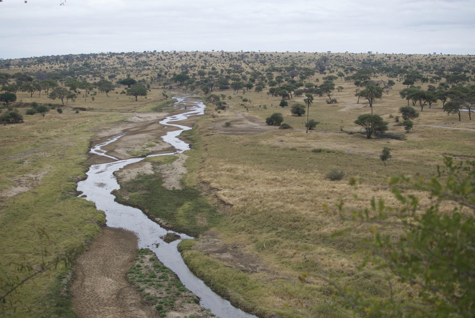 file 20170613 25868 1mkw5lr.jpg?ixlib=rb 1.1 - On the savanna, mobile phones haven't transformed Maasai lives – yet