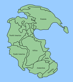 The supercontinent Pangaea before it split apart