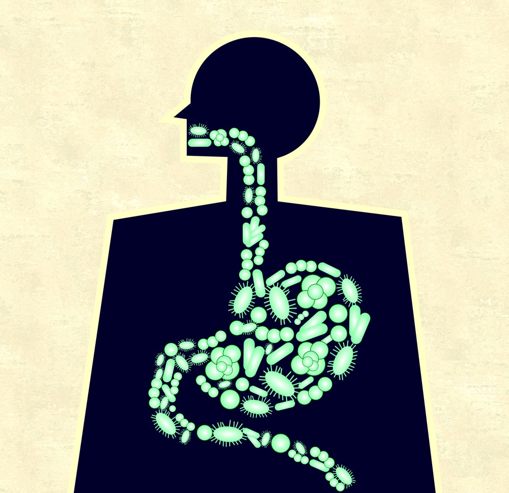 Essays On Health Microbes Aren T The Enemy They Re A Big Part Of
