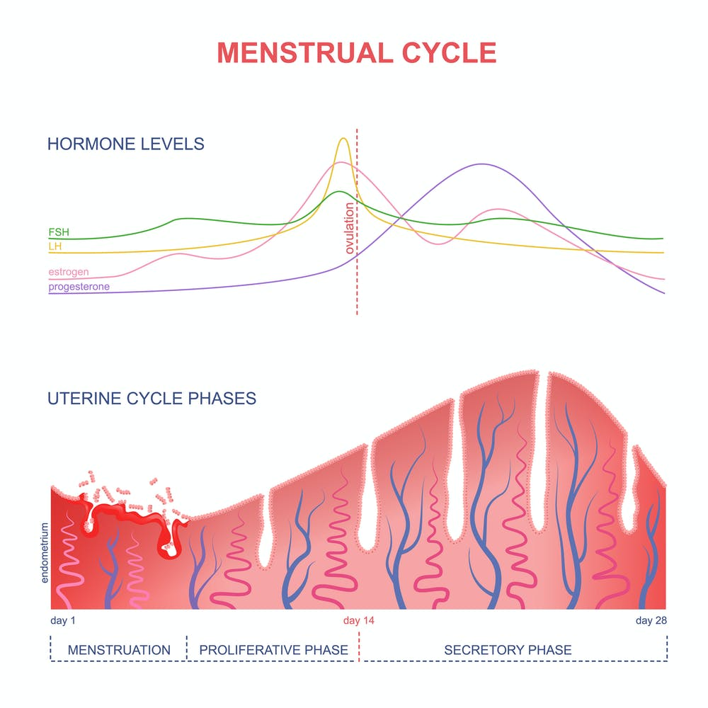 Menstruation and the mind – a complicated relationship