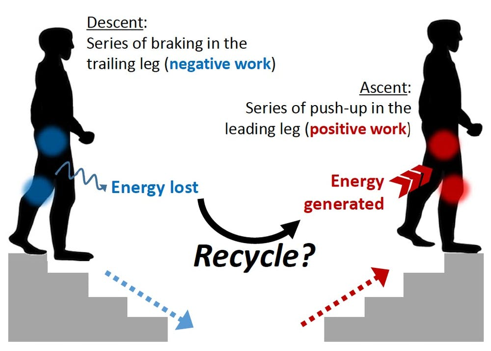 Energy-recycling stairs could add a spring to your step