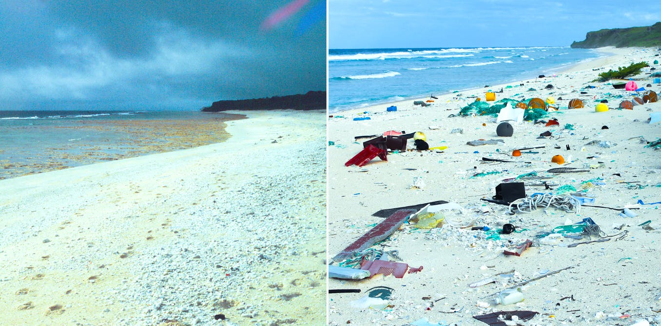 Photos Of Henderson Island The Remote Covered In Trash Business Insider
