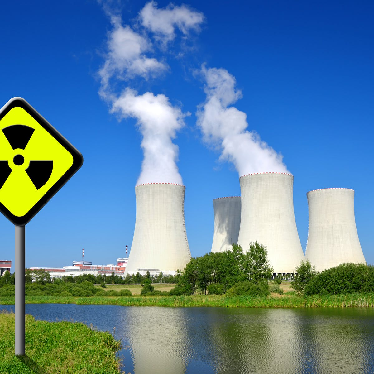 Small nuclear power reactors: Future or folly?