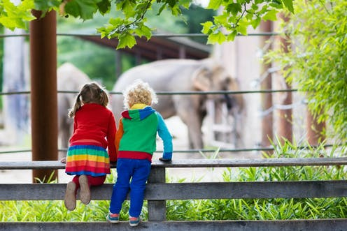 how to save zoos focus on education conservation