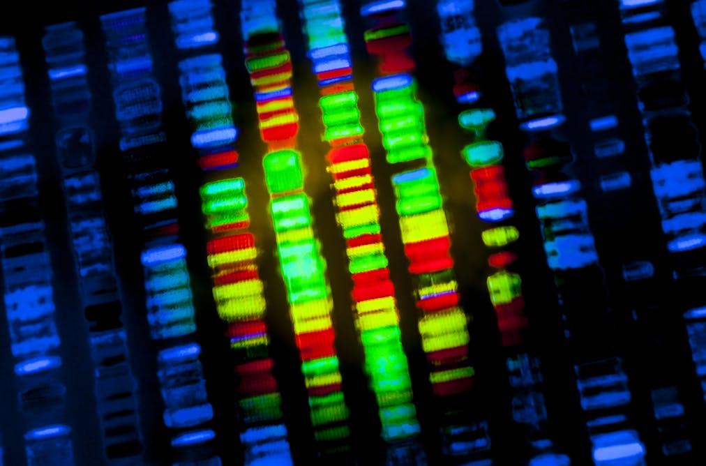 Acute myeloid leukaemia: researchers zero in on treatment