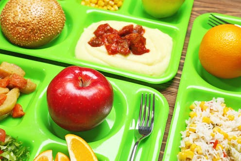 persuasive speech on healthier school lunches