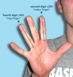 Finger size does matter    in sports