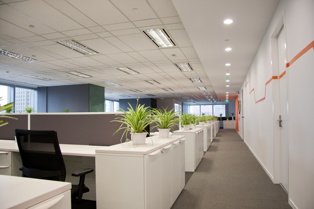 Nice office design Cheap Not Just Nice To Have Nature In The Workplace Makes Employees Happier And Healthier The Conversation Not Just Nice To Have Nature In The Workplace Makes Employees