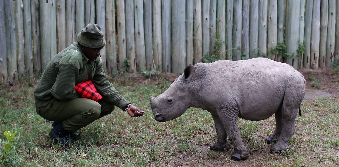 poaching-communities