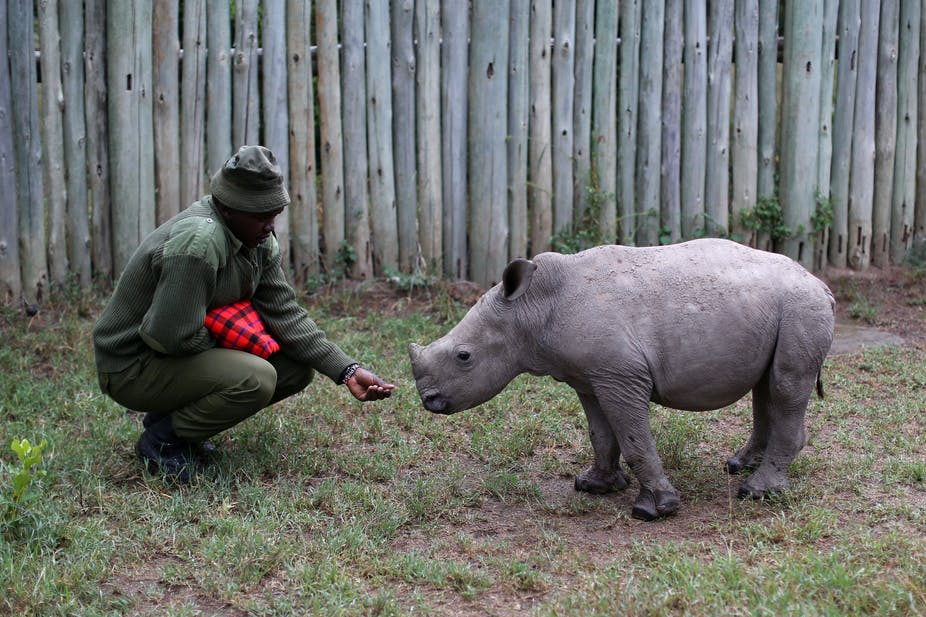 The fight against poaching must shift to empowering communities