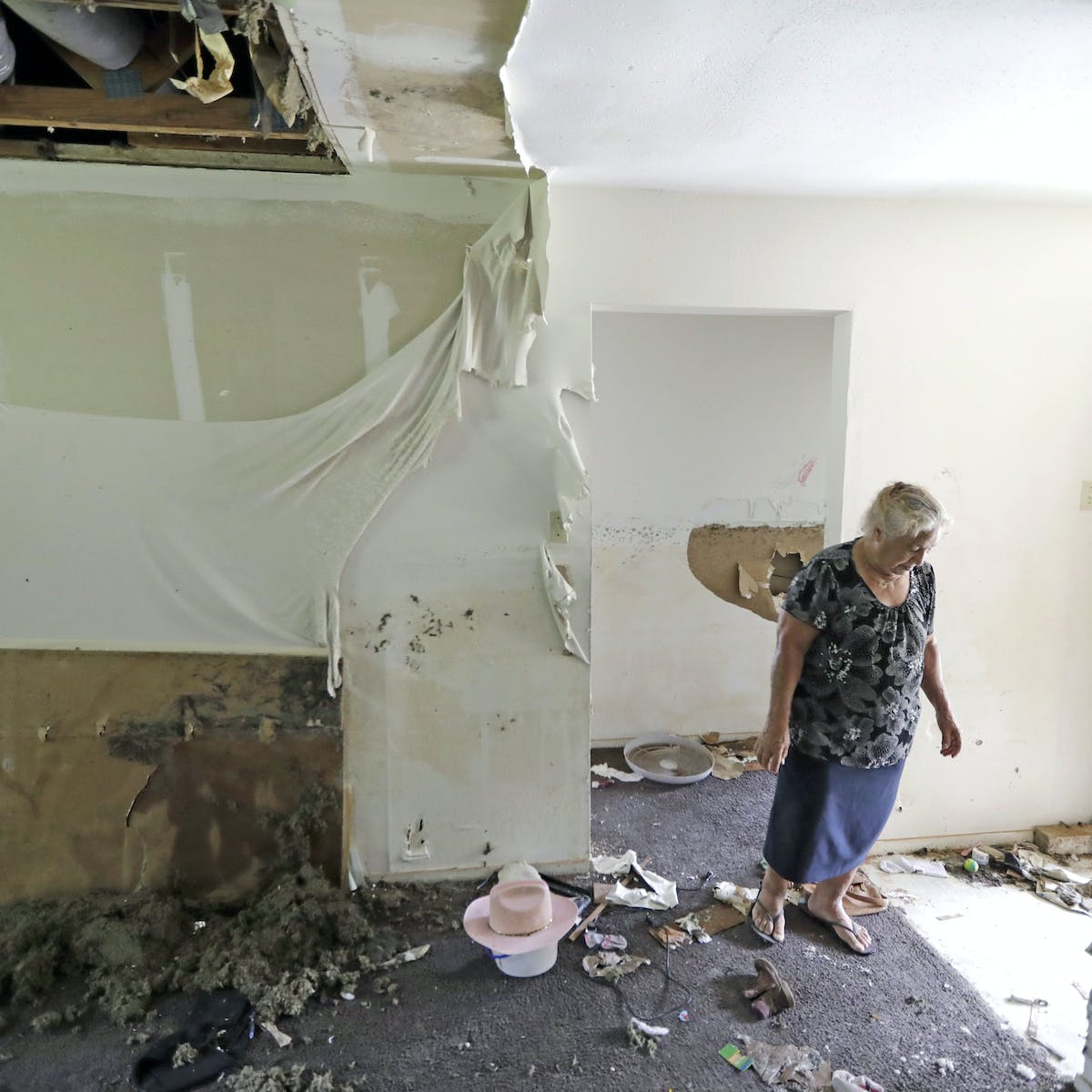 Beyond bleach: Mold a long-term problem after flooding and disasters