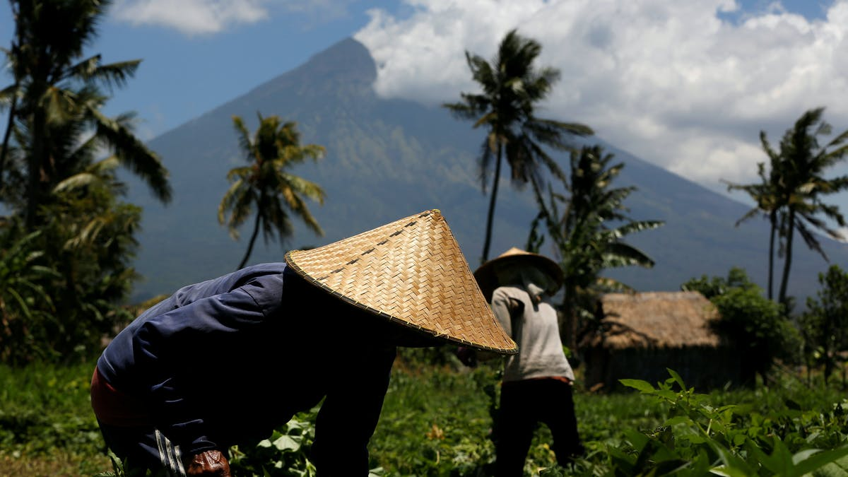 Letusan Gunung Agung Bisa Menghasilkan Tanah Tersubur Di Dunia