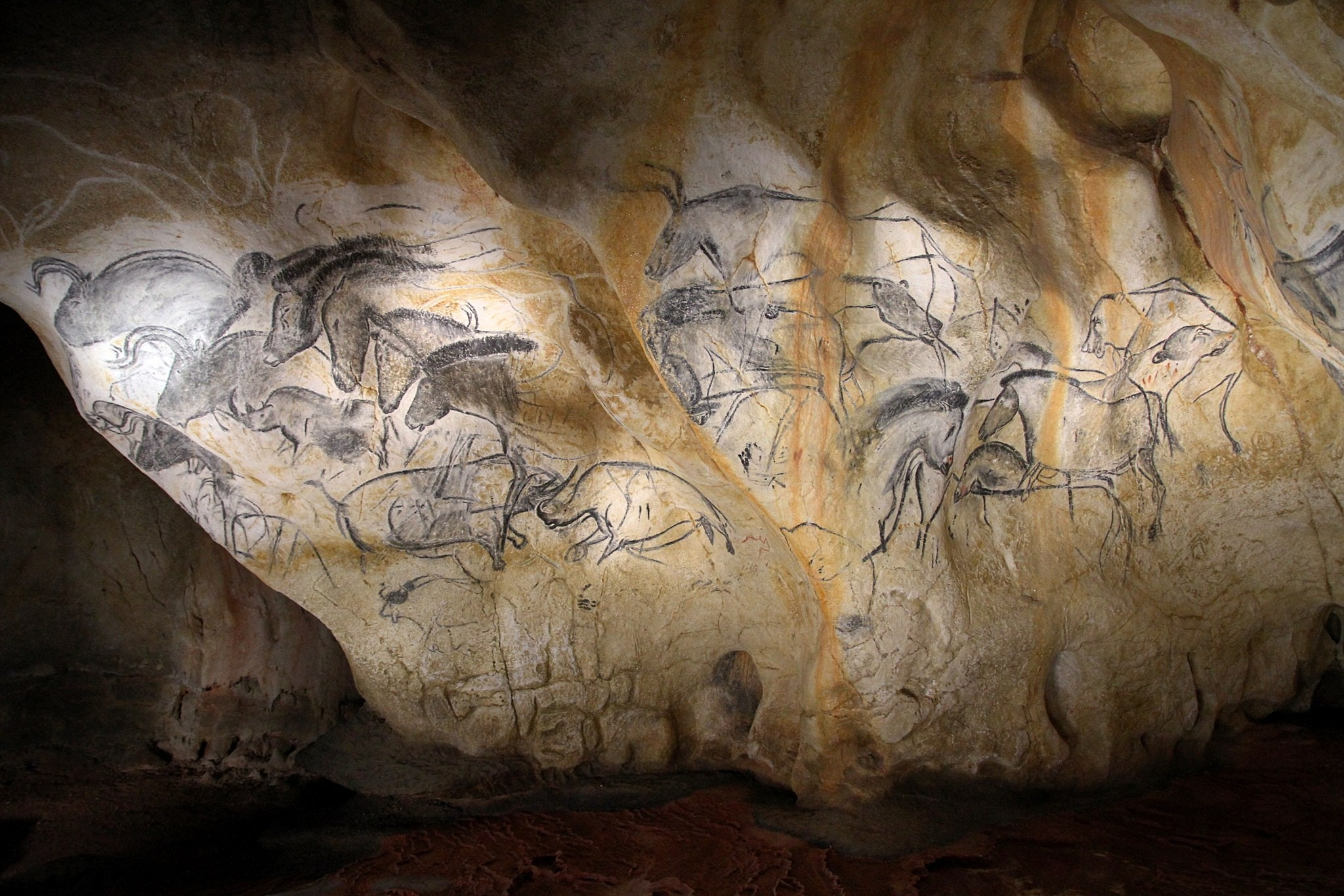 Image of Horses and other animals on the walls of the Chauvet Cave in southern France, from 30,000 years ago.
