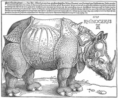 Albrecht Durer's rhinoceros, 1515