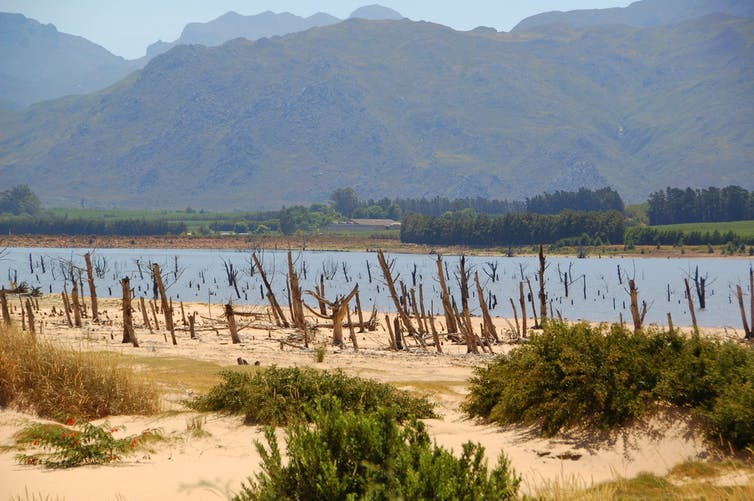 Cape Town's drought and associated water shortage has escalated disaster level. Flickr