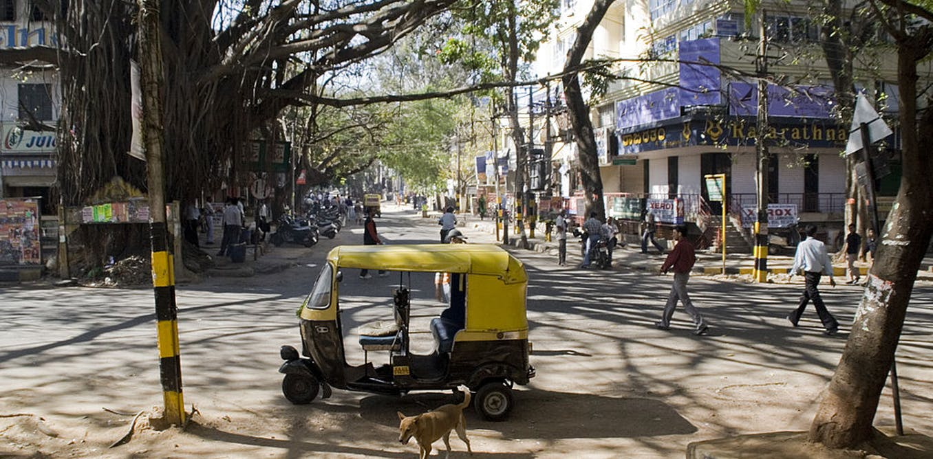 When cities were Nature's haven: a tale from Bangalore