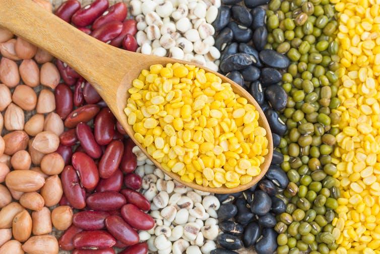 Makanan Yang Dapat Menurunkan Risiko Penyakit Jantung