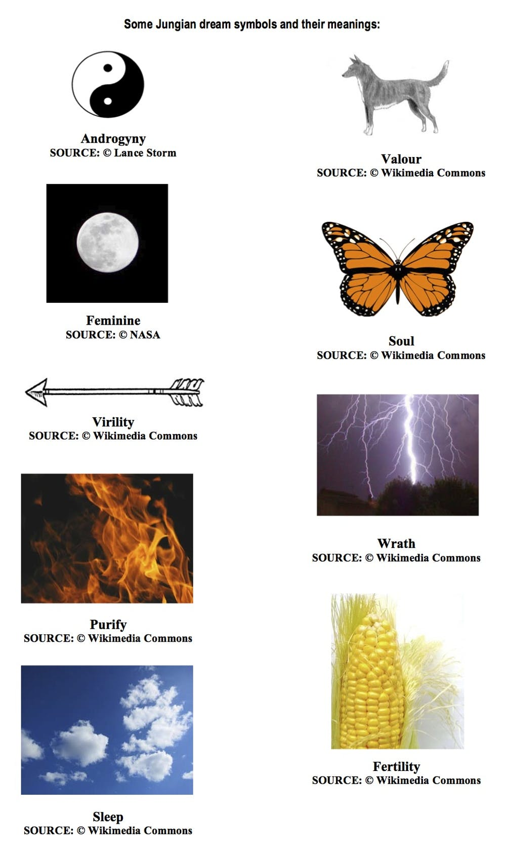The science of interpreting common symbols in dreams lance storm a group of biocorpaavc Choice Image
