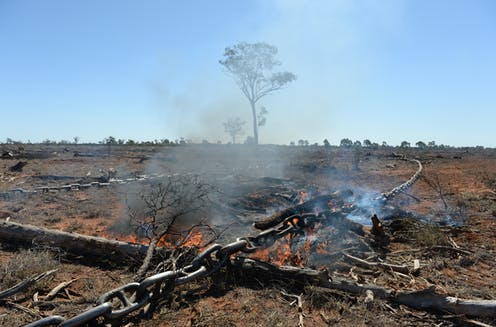 Australia is a global top-ten deforester – and Queensland is