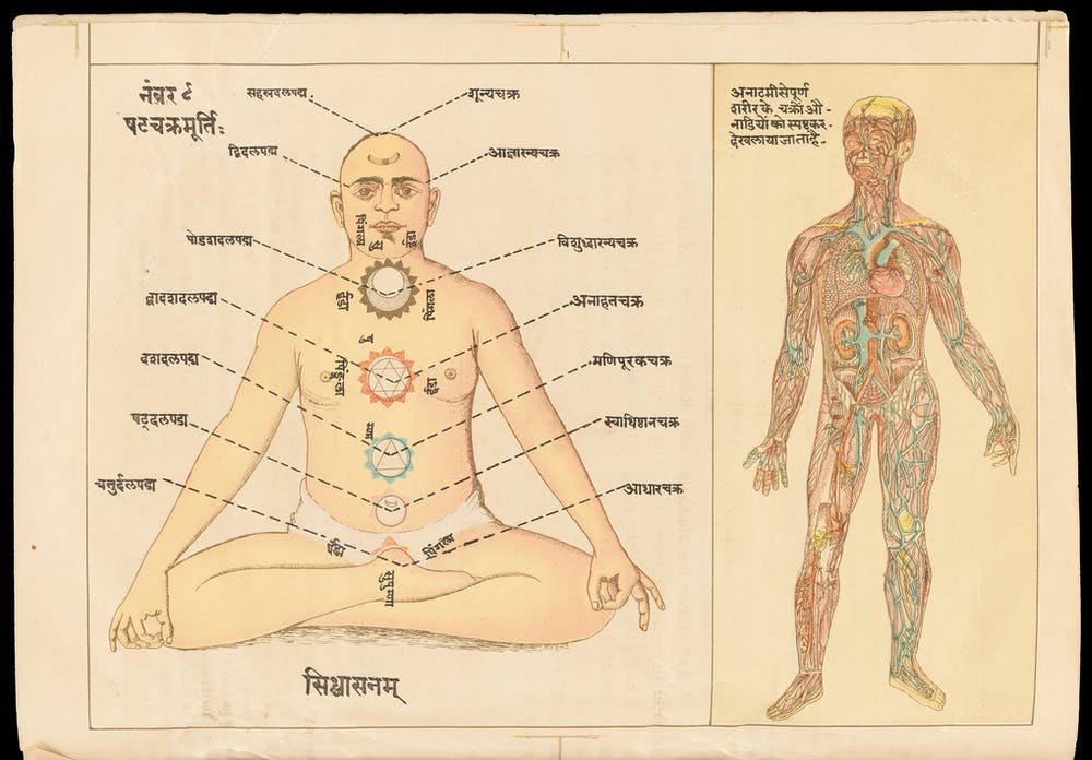 From Ayurveda To Biomedicine Understanding The Human Body