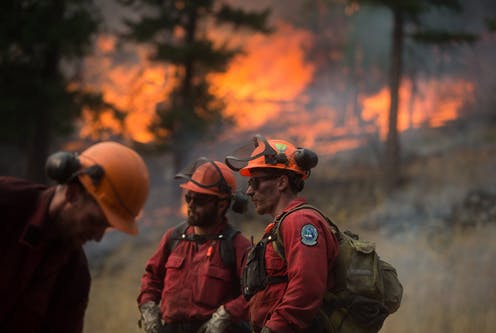Canada heatwave: Hundreds killed in wildfires and residents forced to evacuate File-20171120-18566-1wj271n.jpg?ixlib=rb-1.1