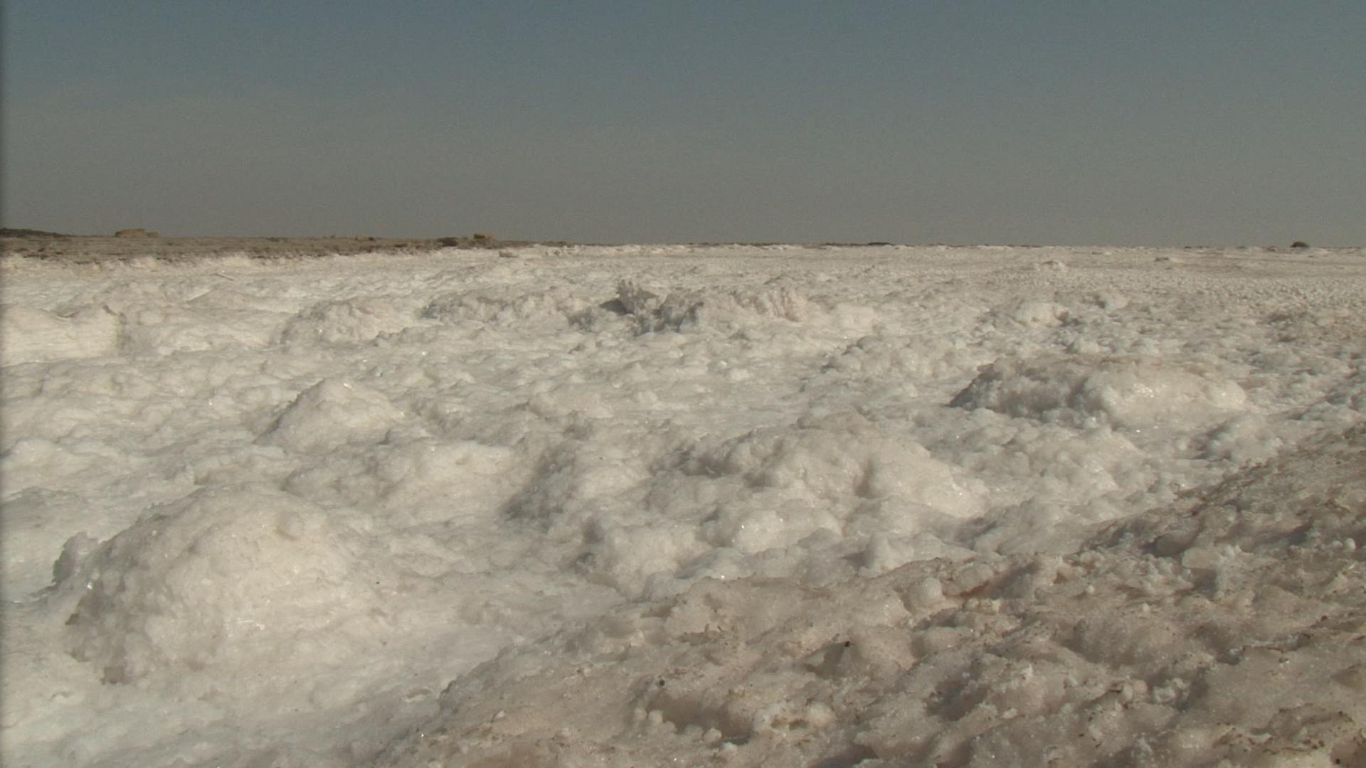 Salt desert — the Rann of Kachchh. Credit: KP Jayasankar
