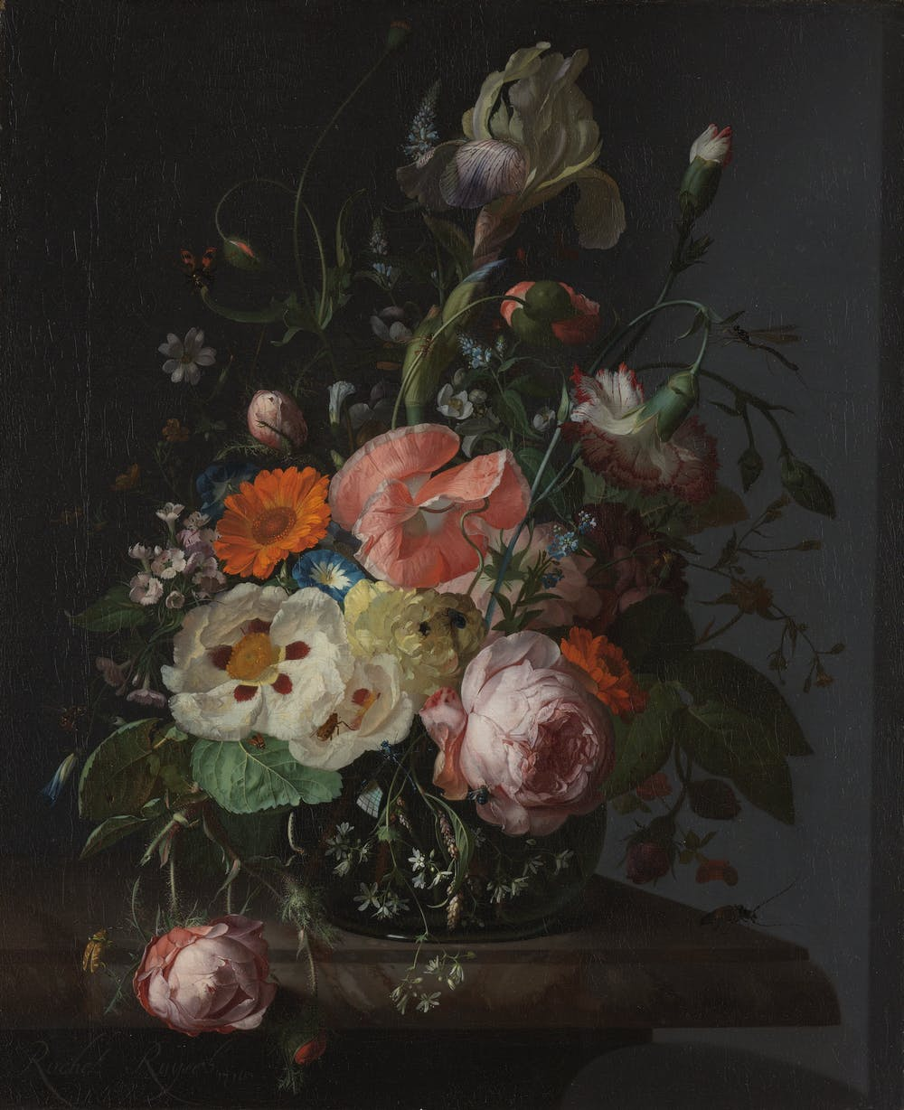 Here\'s looking at Rachel Ruysch\'s Still life with flowers in a glass ...