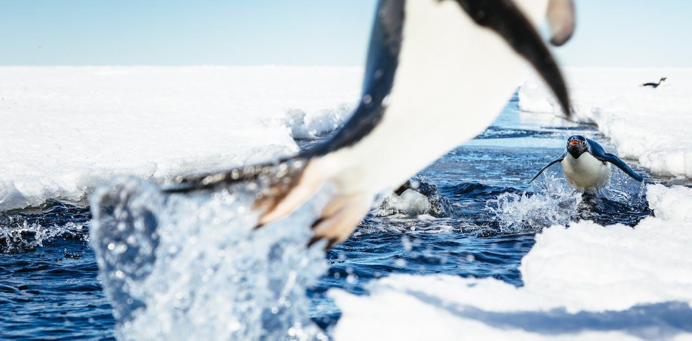 The Global Warming News Blog