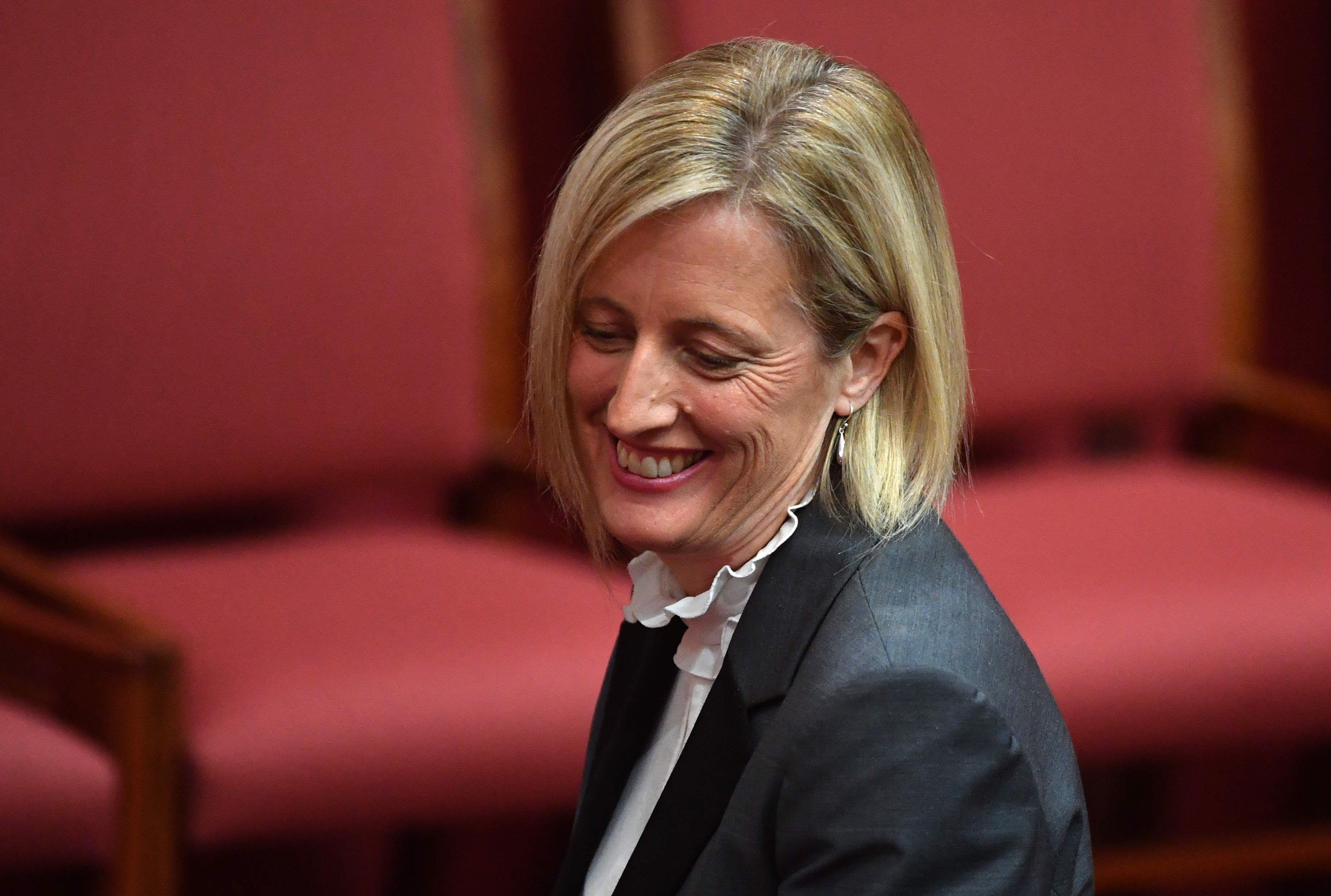 Labor senator referred to High Court and others could follow