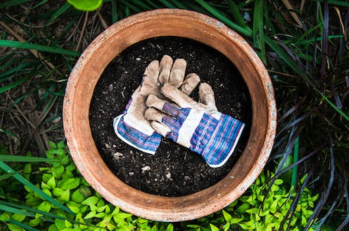 At least) five reasons you should wear gardening gloves