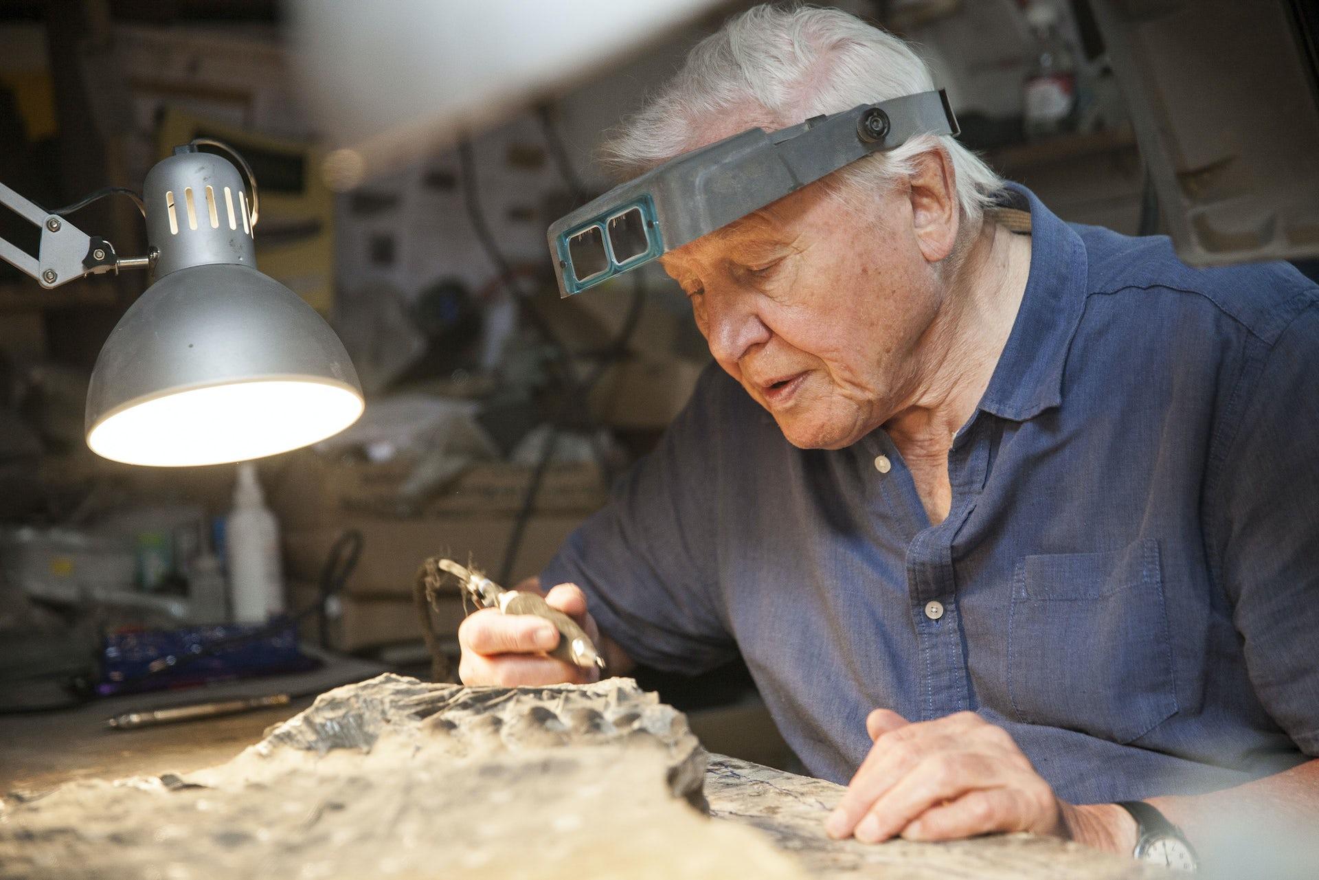 Sir David Attenborough blasts Bear Grylls for killing animals on TV show